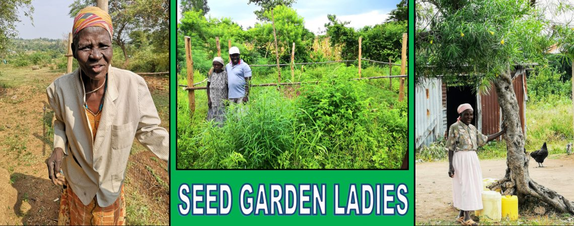 Seed Gardens
